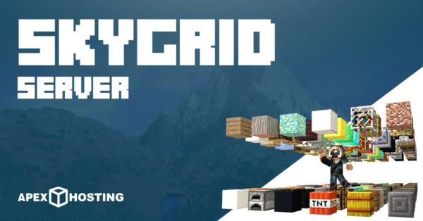 Start a SkyGrid Server